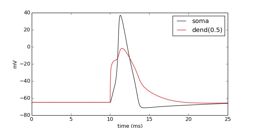 Ball-and-stick: 3 - Basic cell — NEURON + Python Tutorials